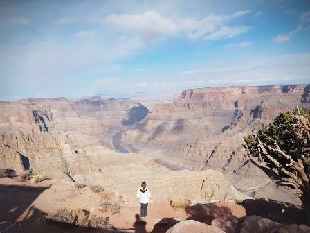 canyon background.jpg